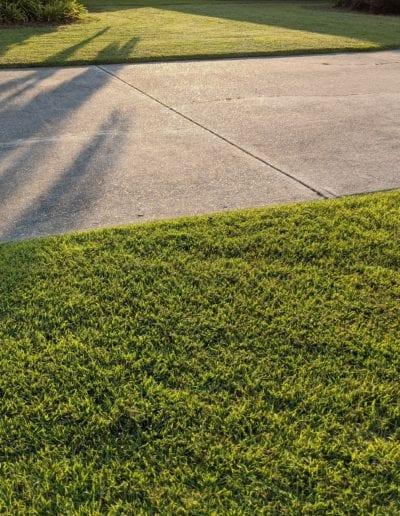 lawn service foley