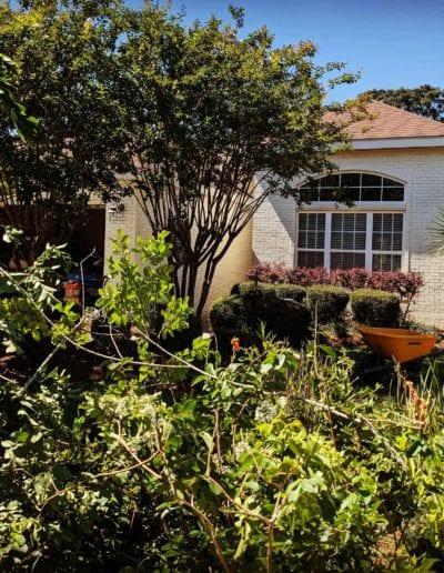 storm cleanup baldwin county